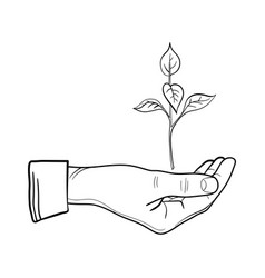 human hand with a young sprout line art sprout vector image