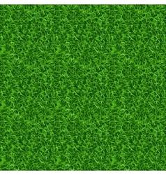 Seamless grass texture vector