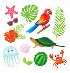 summer elements plants and animals objects vector image