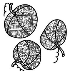 Three small pumpkins with fantasy patterns ornate vector