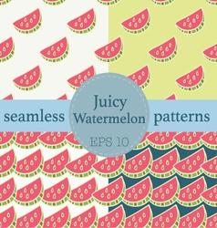 Juicy watermelon seamless pattern set vector