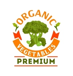 Broccoli organic healthy vegetable emblem vector image