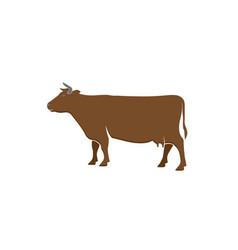 cow dairy logo design vector image