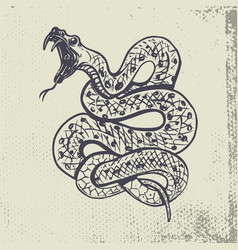 Hand drawn snake on grunge background vector