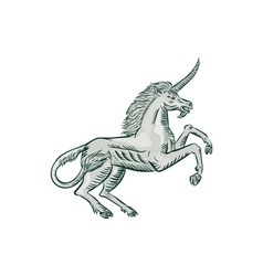 Unicorn Horse Prancing Side Etching vector