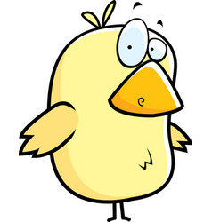 yellow bird vector image