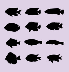 cute fish silhouette vector image