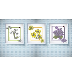 Flowers in frames vector