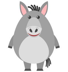 Gray donkey on white background vector
