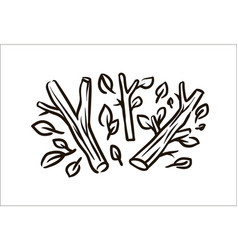 hand drawn branch simple sketch vector image
