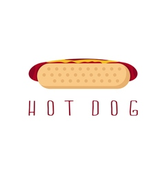 hot dog with ketchup and mustard design template vector image