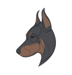 Continuous line doberman pinscher single line vector