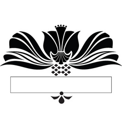 scroll design vector image