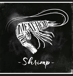 Shrimp cutting scheme chalk vector