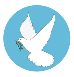 white dove on white background vector image