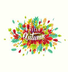 fashionable autumn vector image