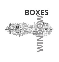 Where did the window boxes go text word cloud vector