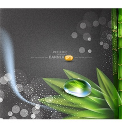 background grey colors vector image