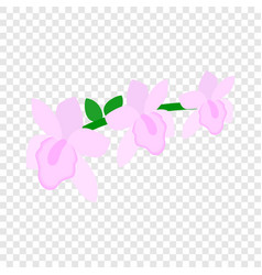 pink orchid isometric icon vector image vector image