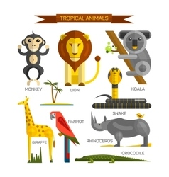 Tropical animals set in flat style design vector image vector image