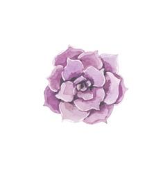 Pink wedding flower decoration vector image