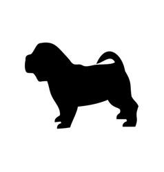 dog breed shar pei vector image