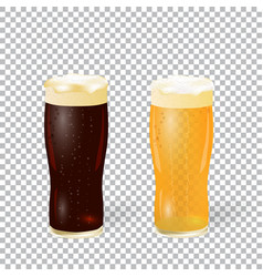 festival of beer dark and light beer in a glass vector image