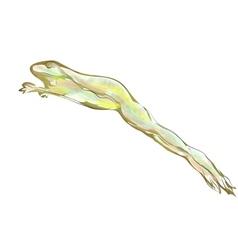 Frog jumping vector