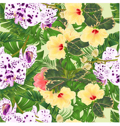 seamless texture tropical flowers orchids vector image