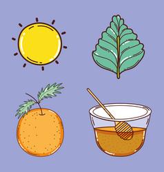 set of detox recipe icons vector image