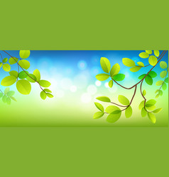 tropical green leaves banners natural background vector image