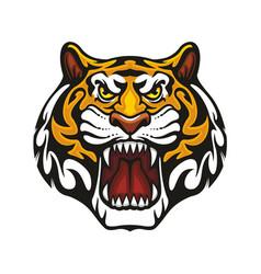 tiger animal muzzle sport team mascot icon vector image
