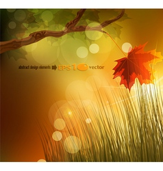 background with maple leaf vector image