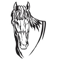 Decorative portrait of horse 5 vector