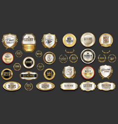 gold and silver luxury badges retro design vector image