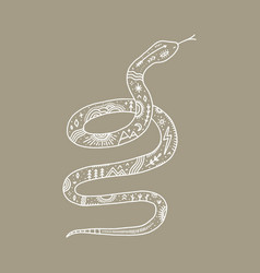 isolated snake and night landscape inside double vector image