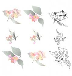Jasmine branches vector