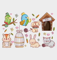 Pet shop cartoons vector