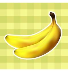 Plaid fabric with bananas vector image