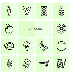 14 vitamin icons vector