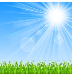 Background with a blue sky sun and green grass vector