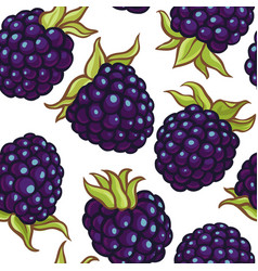 Blackberry berries pattern vector