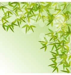 Colorful Stems and Bamboo Leaves Background vector image