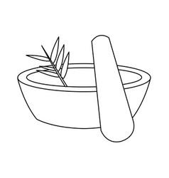 Mortar spa herbal nature care treatment vector