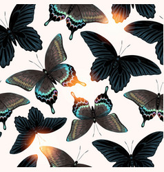 Pattern with high detailed black butterfly vector