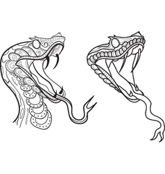 Snake Heads vector image