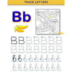 Tracing letter b for study alphabet printable vector