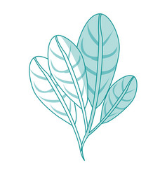 blue silhouette image set elongated leaves with vector image