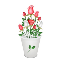 A Lovely Roses Bouquet in White Bucket vector image