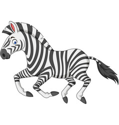 cartoon zebra running vector image